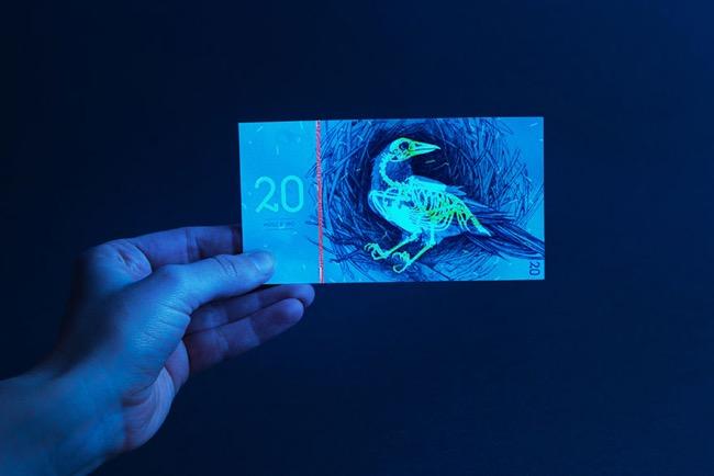 animaux-billet-banque-hongrie-barbara-bernat, Des Animaux Investissent les Billets de Banque Hongrois