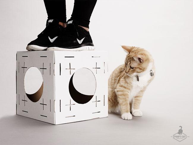 blocks cubes poopy cat chat maison modulable 01 - Blocks,  Maison Modulable pour Chat en Cube de Carton (video)