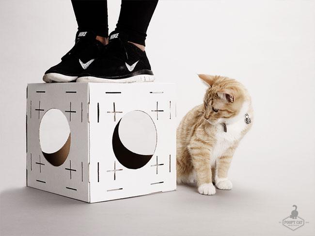 , Blocks,  Maison Modulable pour Chat en Cube de Carton (video)