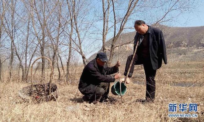 jia-haixia-jia-wenqi-elderly-handicape-plante-arbres-chine-1