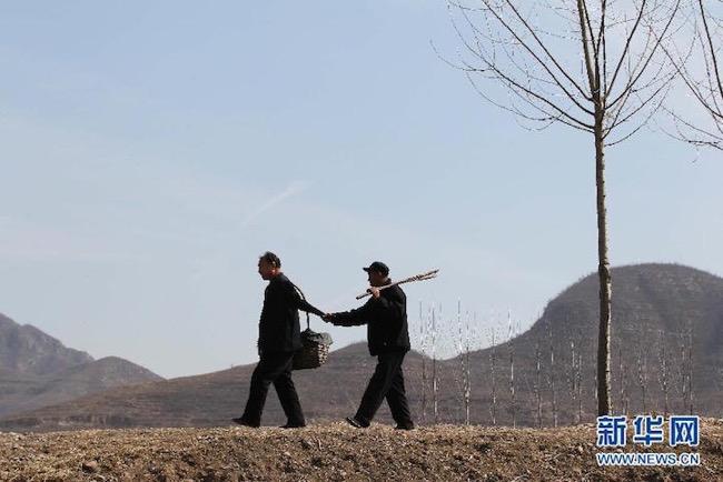 jia-haixia-jia-wenqi-elderly-handicape-plante-arbres-chine-11