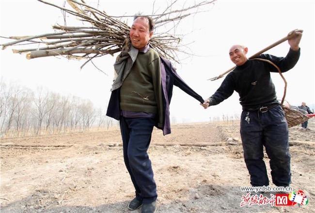jia-haixia-jia-wenqi-elderly-handicape-plante-arbres-chine-2