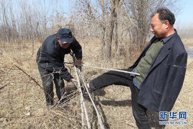 jia-haixia-jia-wenqi-elderly-handicape-plante-arbres-chine-4