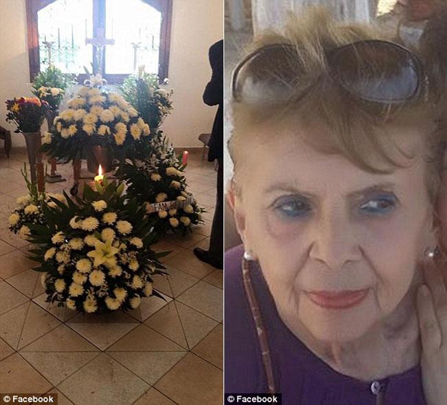 , Ces Chiens Errants Assistent aux Funérailles de celle qui les Nourrissait