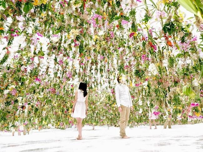 tokyo 2300 fleurs installation art teamlab 0 - Evasion Printanière à Tokyo sous 2300 Fleurs en Suspension (video)
