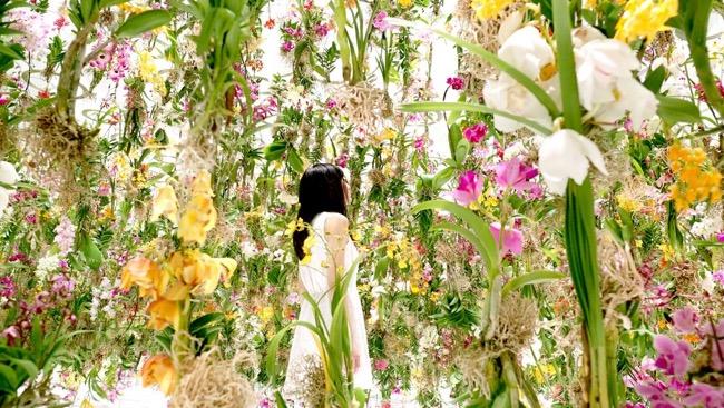 tokyo-2300-fleurs-installation-art-teamlab-3