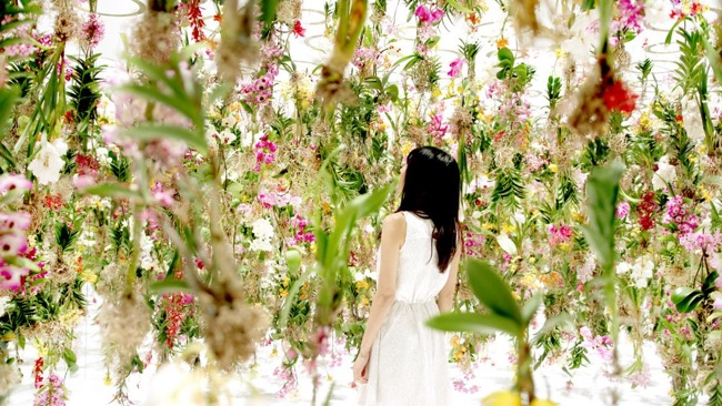 tokyo-2300-fleurs-installation-art-teamlab-4