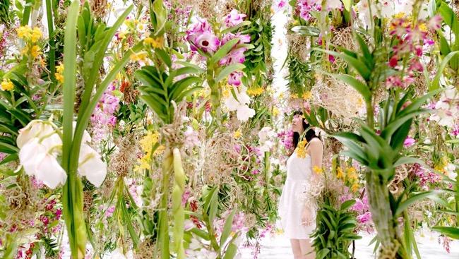 tokyo-2300-fleurs-installation-art-teamlab-6