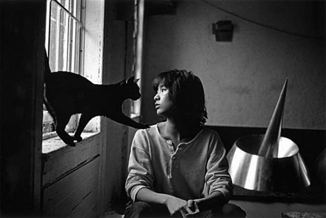 , 50 Portraits d'Artistes et de leurs Chats dans un Ouvrage des Plus Inspirant et Inspiré