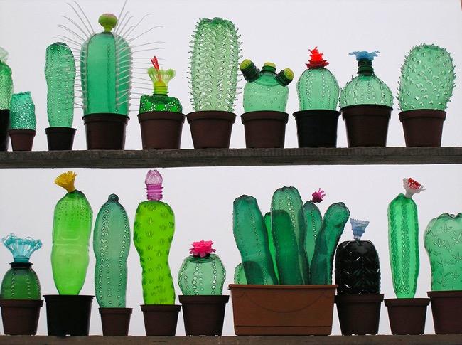 Sehr Incroyable, ces Cactus et ces Fleurs sont des Bouteilles en  YI91