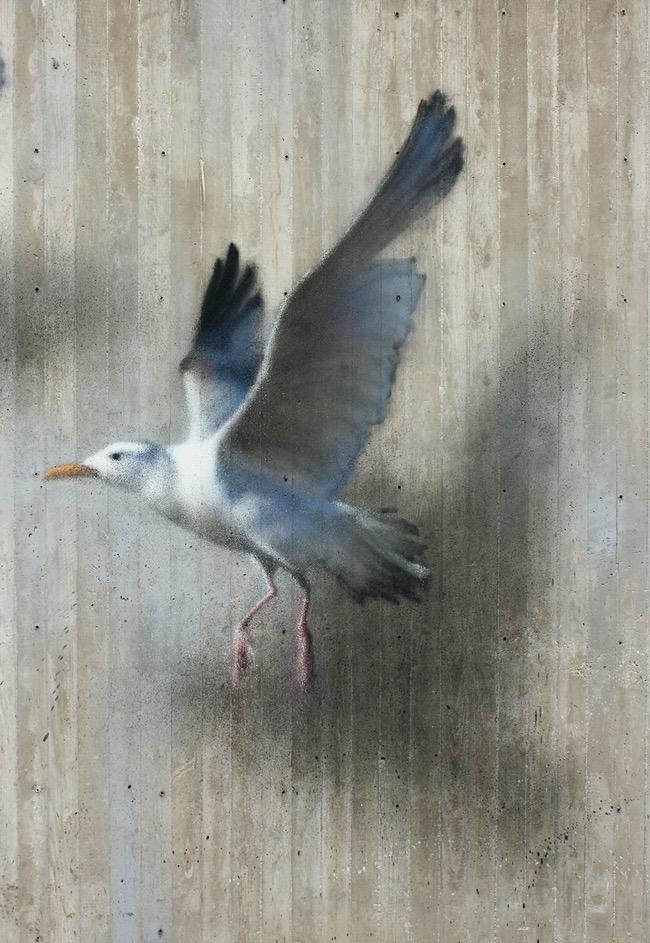 , Les Oiseaux d'Eron, le plus Poète des Street-Artistes Italiens (video)