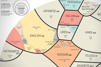 langues-maternelles-infographie-alberto-lucas-lopez-5