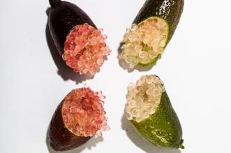meilleurs-fruits-exotiques-tropicaux-photographie-2
