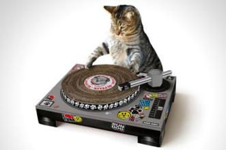 chats-cadeau-accessoires-design-1