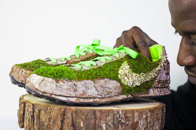 , Passionné de Nature Il transforme des Baskets en Jardins Miniatures