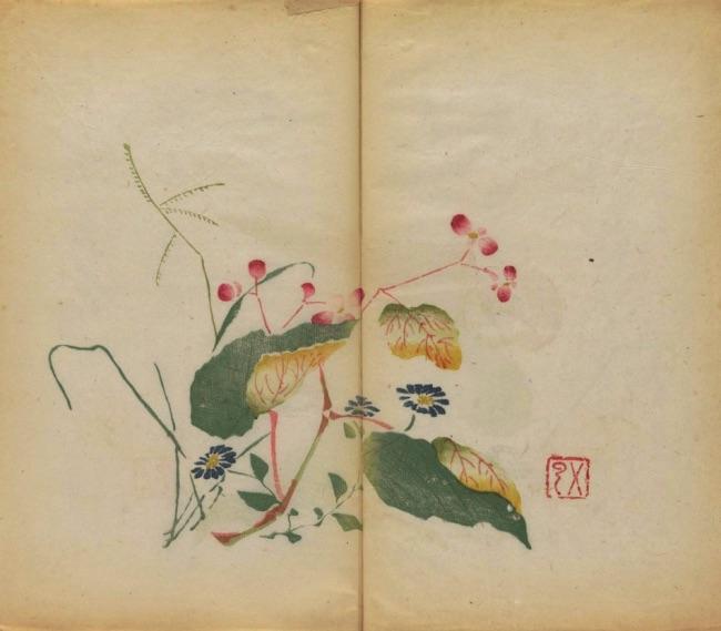 , Le plus Vieux Livre Imprimé en Couleurs de 1633 enfin Numérisé