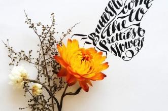 tanya-yeremeyeva-animaux-typographie-3