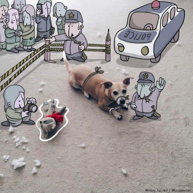 , Il Dessine d'Amusantes Illustrations sur des Photos Ordinaires