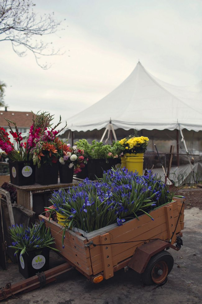 , La Maison Abandonnée 'Flower House' Accueille Aujourd'hui 36 000 Fleurs