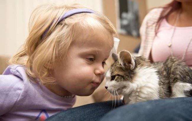 , Amputé ce Chaton est Adopté par une Petite Fille elle aussi Handicapée (video)