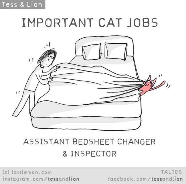 chat illustration lastlemon, Le Chat est Capable de tout Faire pour vous la Preuve ! (Illustrations)
