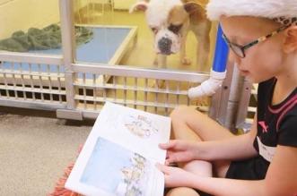 enfants refuges chiens lecture missouri 2 331x219 - Dans ce Refuge les Enfants font la Lecture aux Chiens Abandonnés (video)