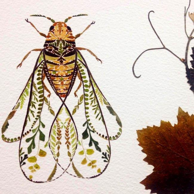 , Poétiques Illustrations Animalières Faites de Plantes Pressées