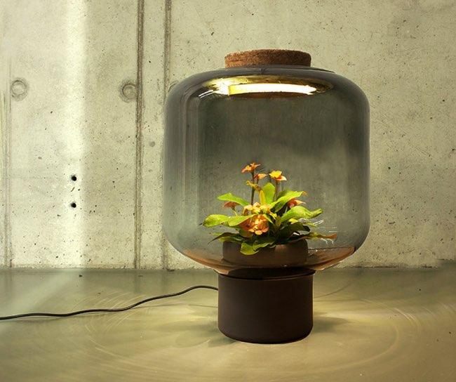 , Quand les Lampes à Plantes Eclairent vos Espaces sans Fenêtres