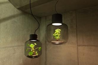 lampe plante mygdal eclairage sans fenetre weloveeames 5 331x219 - Quand les Lampes à Plantes Eclairent vos Espaces sans Fenêtres