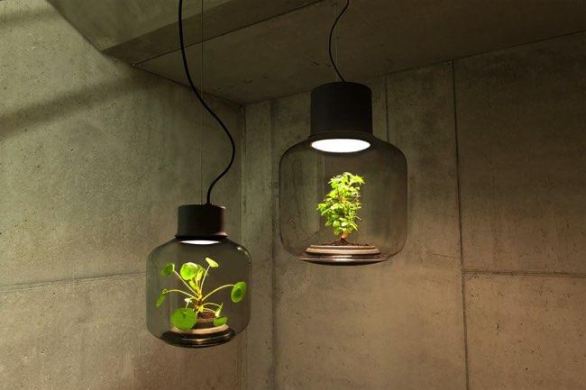 lampe plante mygdal eclairage sans fenetre weloveeames 5 - Quand les Lampes à Plantes Eclairent vos Espaces sans Fenêtres