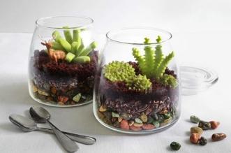 terrariums recette gourmandise 0 331x219 - Ces Vrais Faux Terrariums sont de Succulentes Pâtisseries