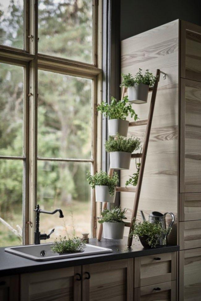 , Chez Ikea les Plantes d'intérieur Prennent Hauteur et Style