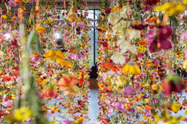 rebecca-louise-law-jardin-suspendu-fleurs-berlin-2