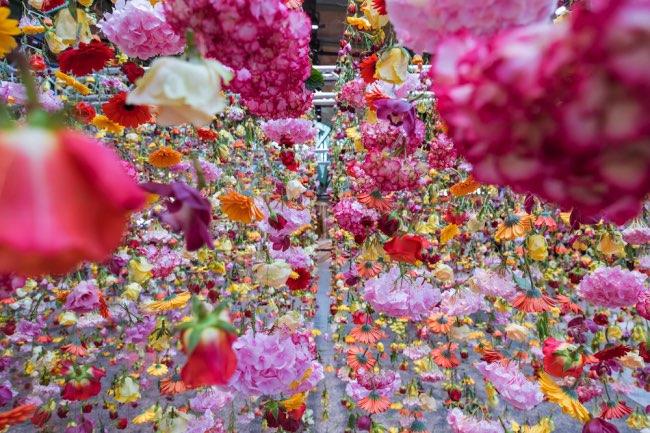 rebecca-louise-law-jardin-suspendu-fleurs-berlin-4