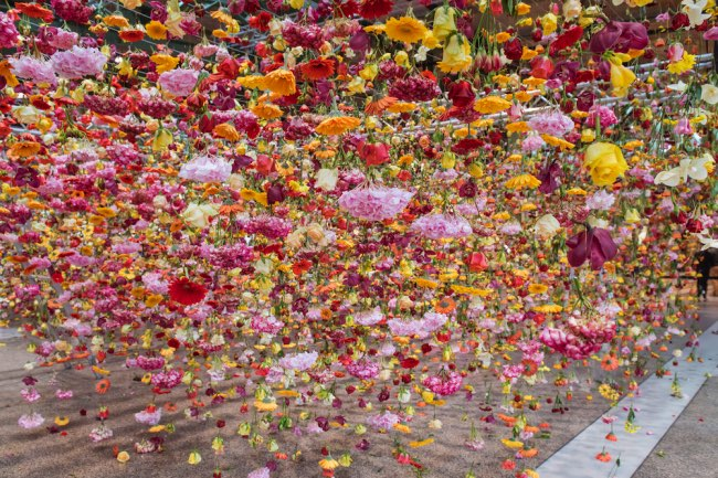 rebecca-louise-law-jardin-suspendu-fleurs-berlin-5