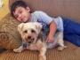 jacob-tumalan-autiste-carson-animal-shelter-refuge-3