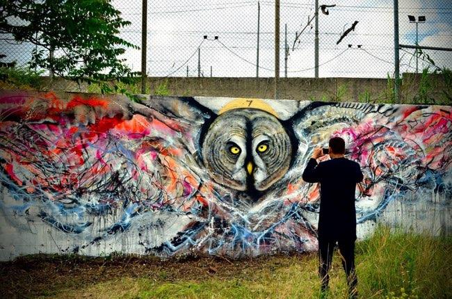 artiste Luis Seven Martins, Envolée Artistique d'Oiseaux sur les Murs de l'Italie