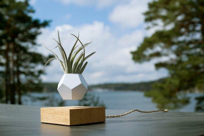 LYFE vase, Vos Plantes vont Adorer ce Pot de Fleur en Lévitation (video)