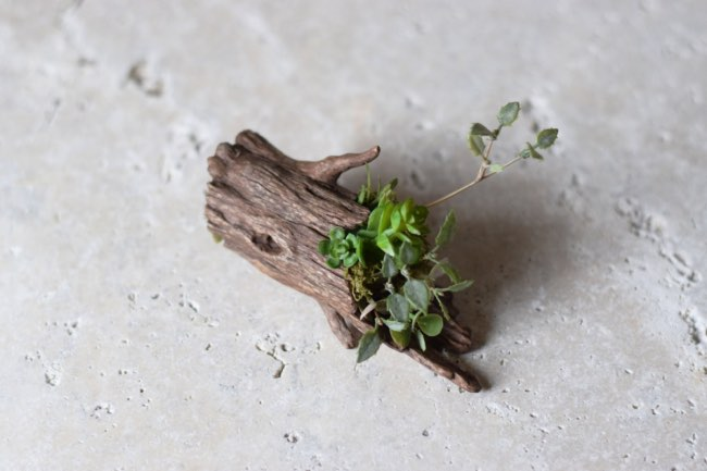 , Tronc d'Arbres, Petites Maisons et Animaux en Mini Pots de Fleurs