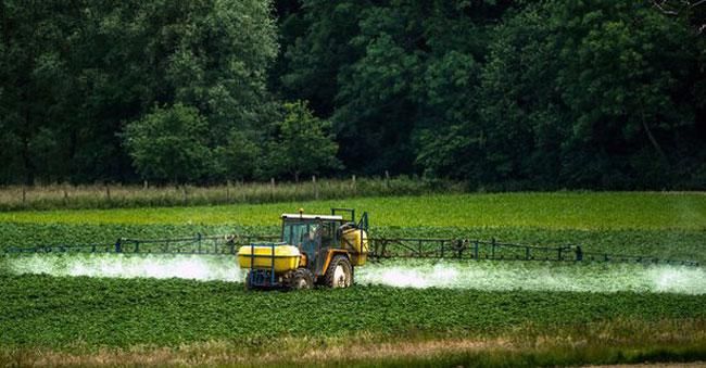 , Greenpeace nous Rappelle qu'il Faut Manger 5 Pesticides par Jour