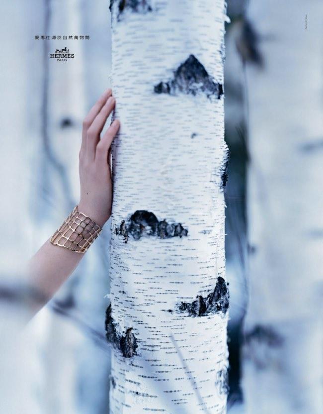 , Hermès Hiver 2016, Beauté Éthérée des Forêts Enneigées