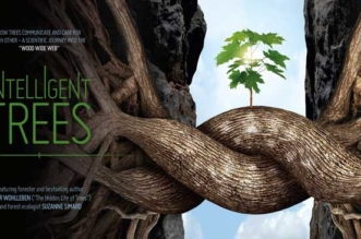intelligent-trees-arbres-intelligents-peter-wohlleben-suzanne-simard-2