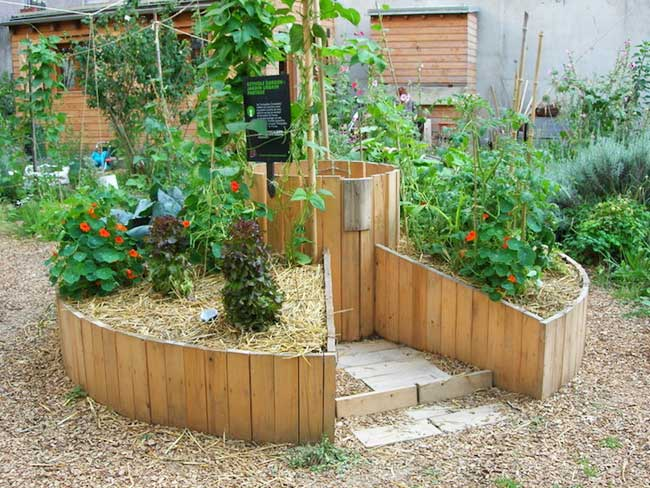 paris vert jardins urbains autorisation, La Ville de Paris Autorise les Jardins Urbains par Tous et Partout