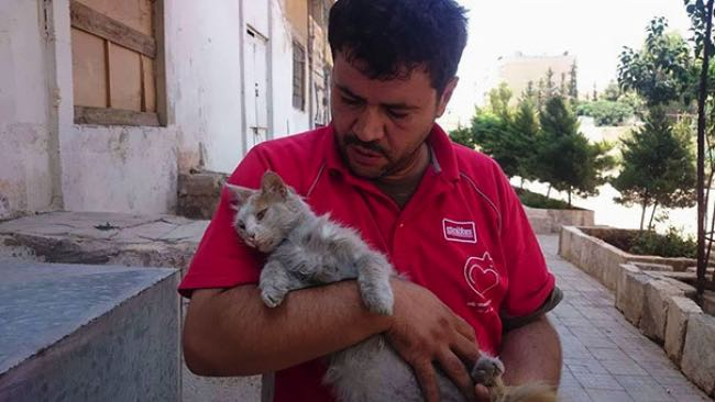 , Pour s'Occuper des Chats Abandonnés, il Reste à Alep Dévastée par la Guerre