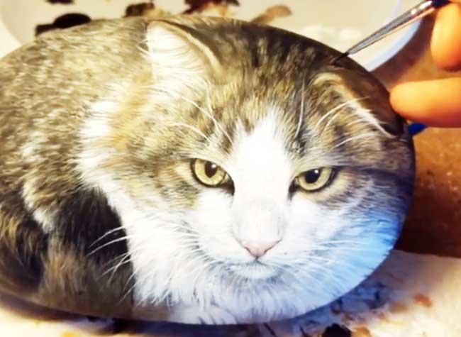 Peinture Sur Pierre ce chat en boule est une réaliste illustration sur pierre (video)