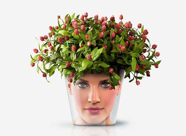 , Donner de Drôles de Têtes à vos Pots de Fleurs (video)