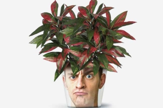 my-facepot-pot-fleurs-personnalisable-photo-illustration-7