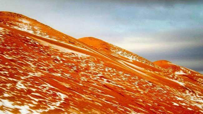 sahara neige desert algerie karim bouchetata 2 - Féérique, Il Neige dans le Désert du Sahara, le plus Chaud au Monde...