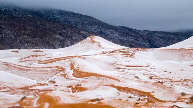 sahara neige desert algerie karim bouchetata 4 - Féérique, Il Neige dans le Désert du Sahara, le plus Chaud au Monde...