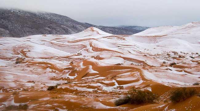 sahara neige desert algerie karim bouchetata 6 - Féérique, Il Neige dans le Désert du Sahara, le plus Chaud au Monde...